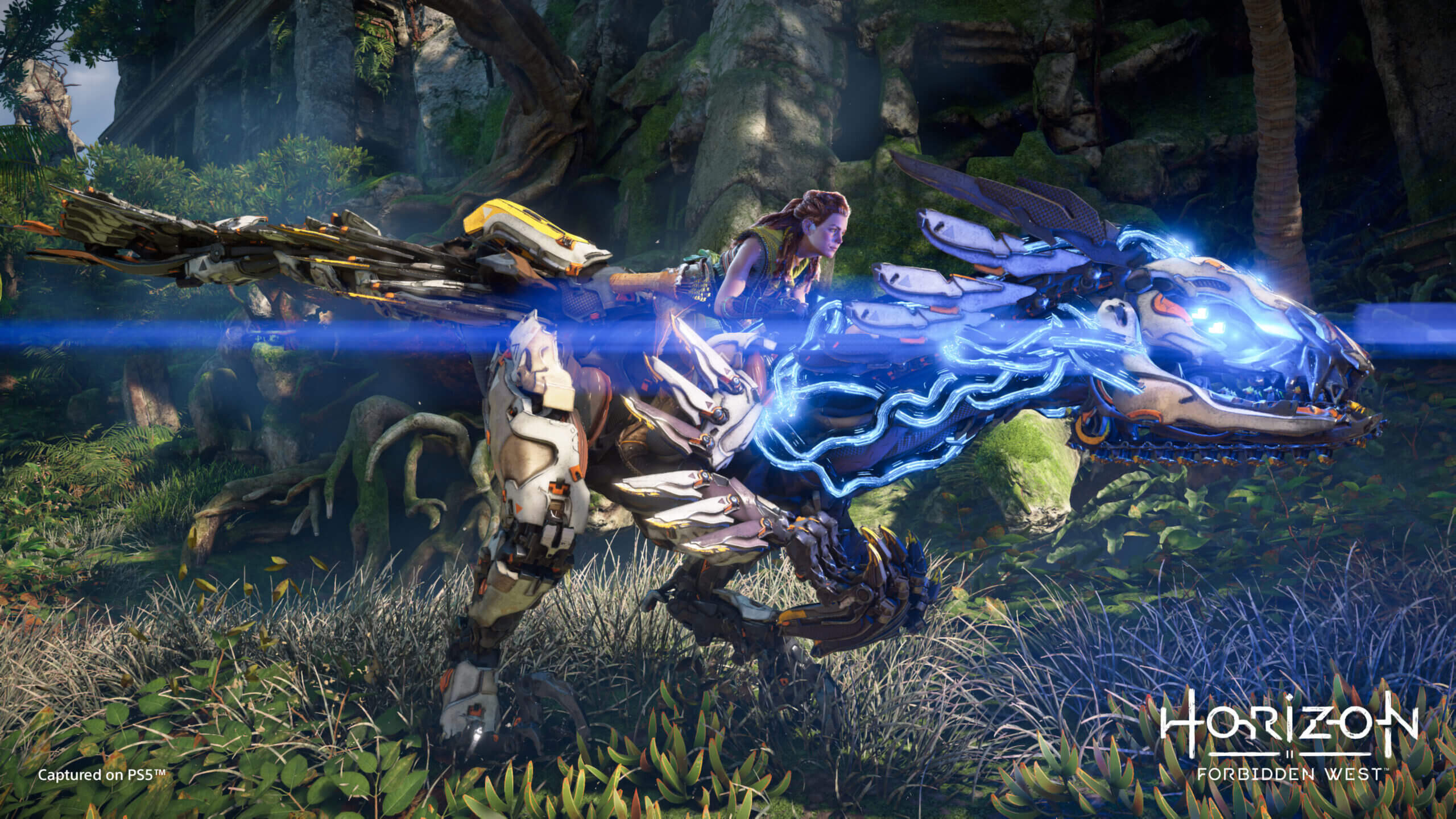 """Horizon Forbidden West: """"Nos aseguraremos de brindar una gran experiencia en PS4"""", aclara Guerrilla"""
