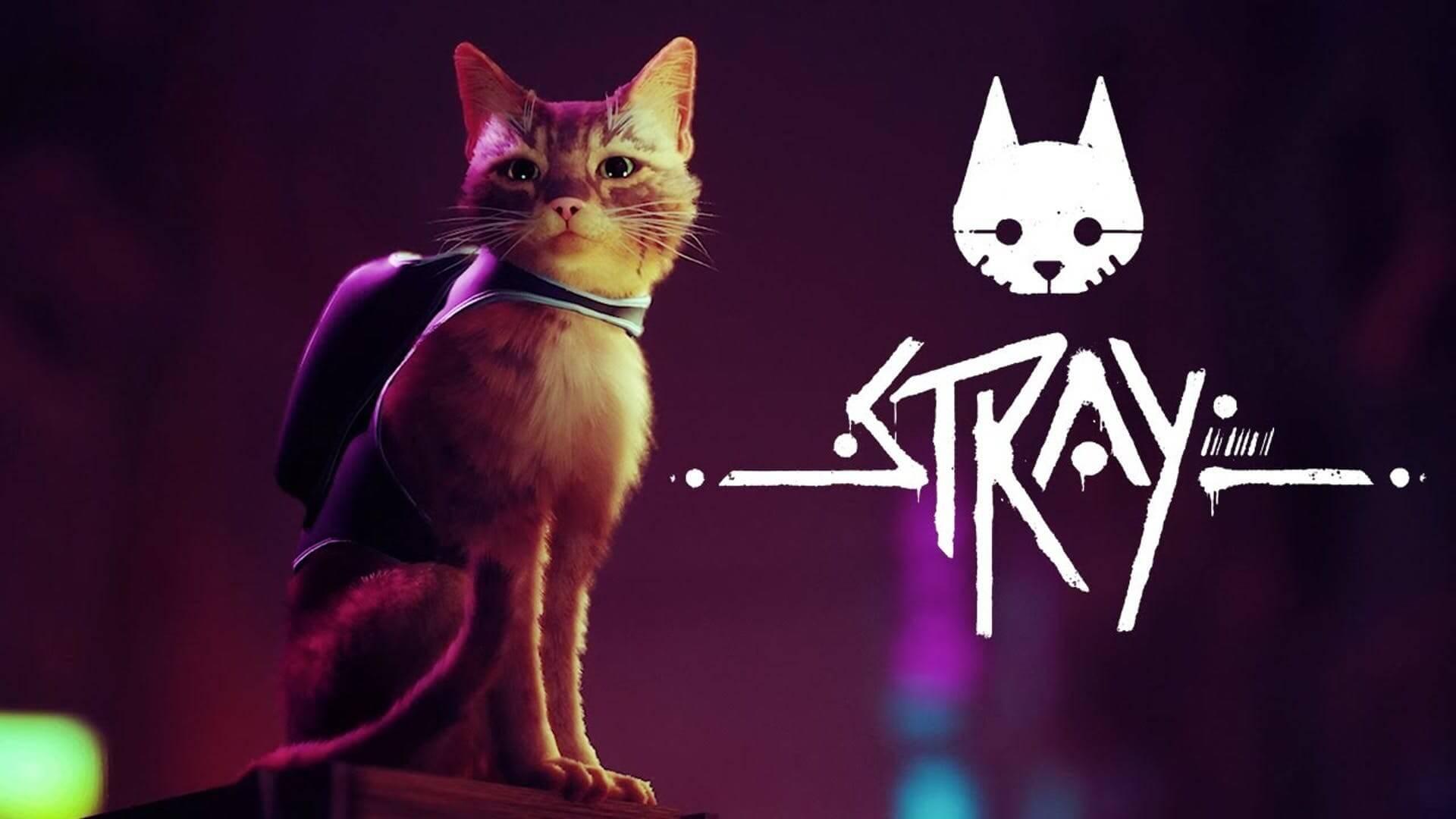 Stray muestra su divertido gameplay gatuno en un nuevo tráiler